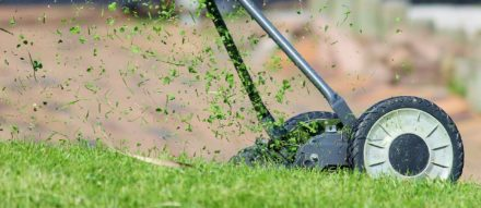 Trugreen Reveals the Three Things Everyone Should Ask before Hiring an Atlanta Lawn Care Service
