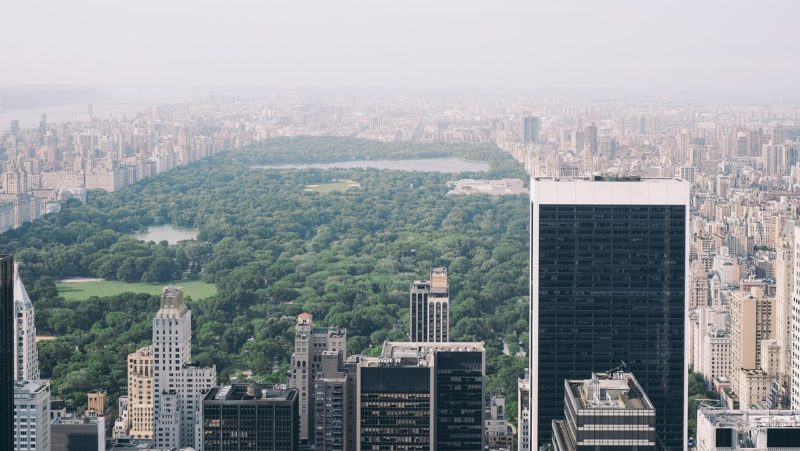 Things to See and Do in Central Park