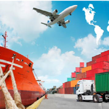 Ensure Streamlined Importing With These Considerations