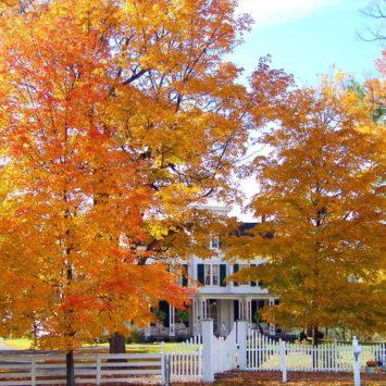 Fall Home Design Ideas To Save You Money