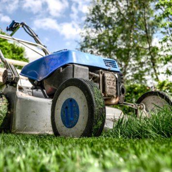 Get Your Garden Summer-Ready