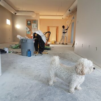 Are Home Renovations in the Cards for You?